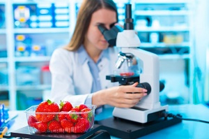 Food Science Jobs